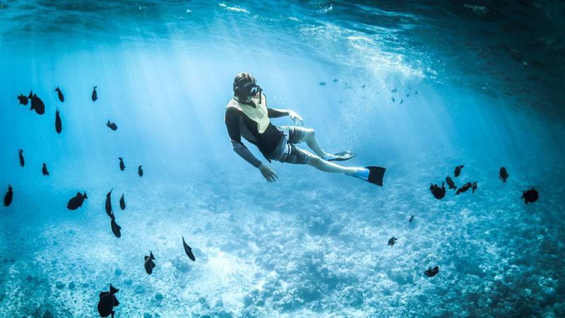 Travel Worker haciendo submarinismo en Byron Bay